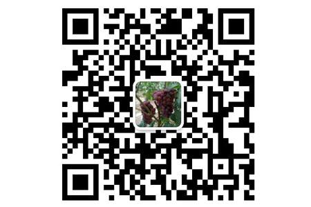 菲尔特肥业二维码